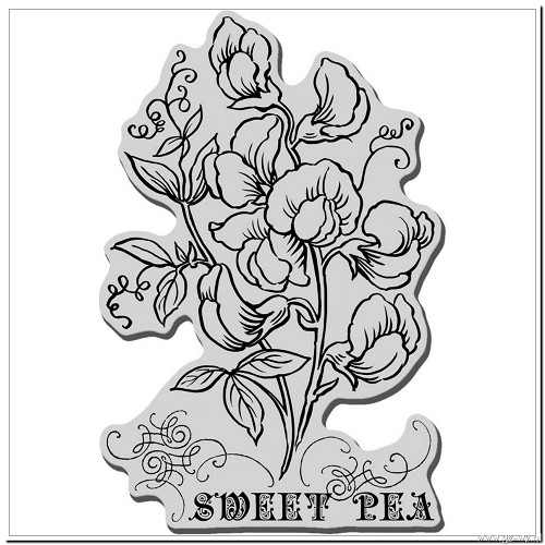 stempel sweet pea crp189 stampendous