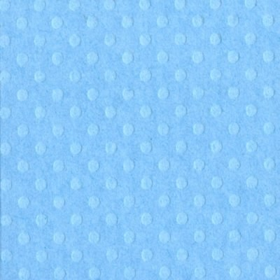 Bazzill Dotted Swiss Cardstock - Poolside